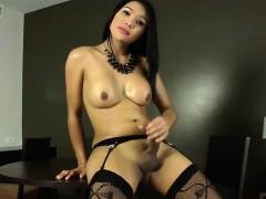 Gorgeous Shemale Fanta Teases And Masturbates