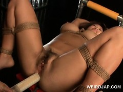 Anal insertion for asian big titted sex slave in ropes